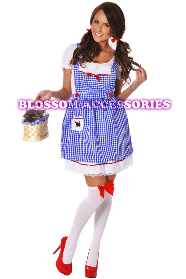dorothy wizard of oz costume adult eBay
