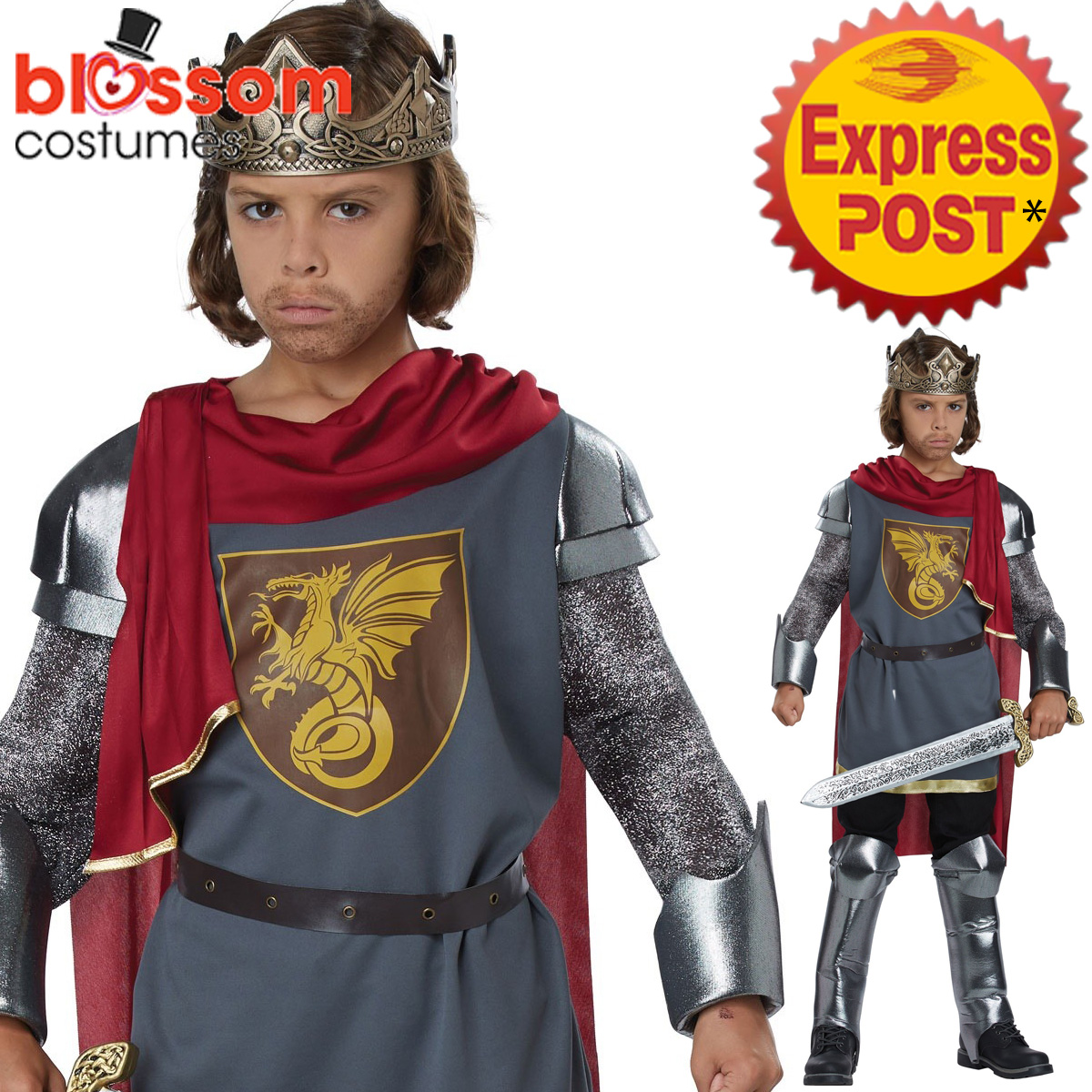 Image is loading CK1087-King-Arthur-Boys-Kids-Warrior-Costume-Medieval-  sc 1 st  eBay & CK1087 King Arthur Boys Kids Warrior Costume Medieval Knight ...