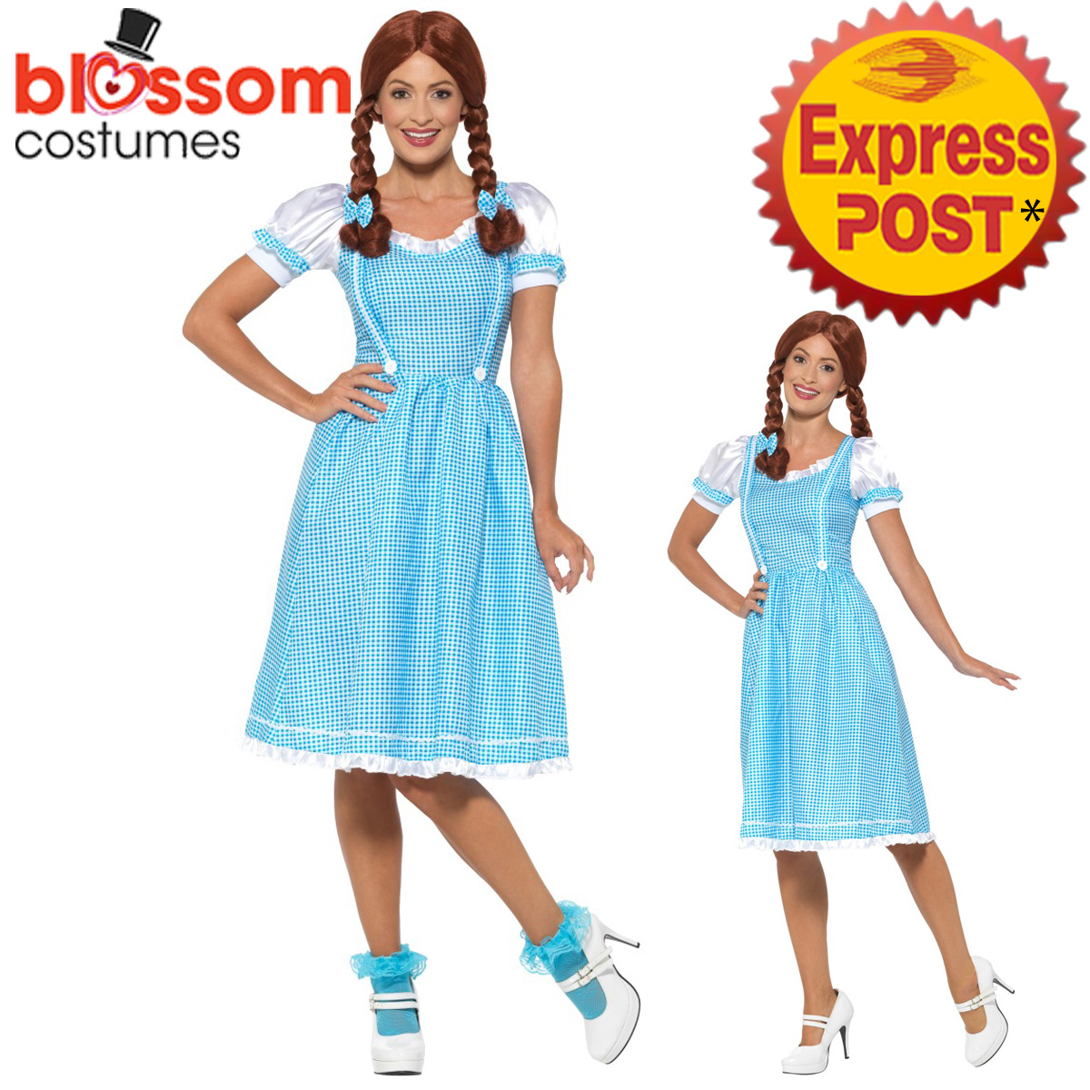 ca745 kansas country girl wizard of oz dorothy fancy dress up