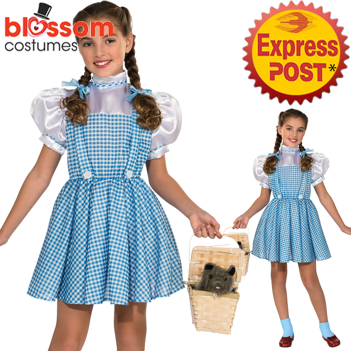 CK1037-Classic-Licensed-The-Wizard-of-Oz-Dorothy-Child-Book-Week-Dress-Costume