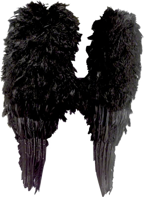 AS139 Black or White Adult Feather Large Wings Angel Halloween Costume Accessory