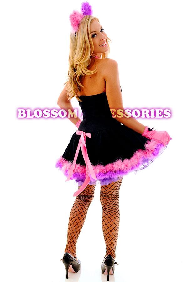 Ladies Cheshire Cat Costume Uk